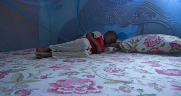 Malaria – progress remains very fragile