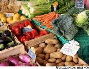 De la cueillette à l'assiette, où s'envolent vitamines et minéraux ?