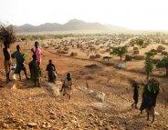 Mobilisation contre la Fièvre jaune au Tchad