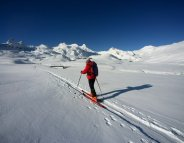 Le ski de fond, c'est du sérieux