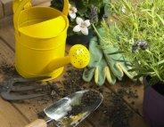 Jardinage : les produits phytosanitaires… avec modération