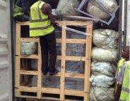 Contrefaçons : 550 millions de médicaments saisis en Afrique