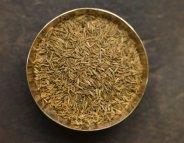 Pas de graines germées crues pour les plus fragiles