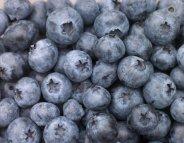 Myrtilles, raisin et pommes : 3 armes anti-diabète