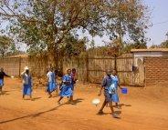 Paludisme : quels insecticides contre les résistances?