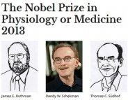 Prix Nobel 2013: la physiologie cellulaire récompensée