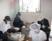 Peste : une épidémie persistante à Madagascar