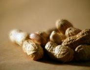 Grossesse et allergie : une découverte qui vaut son pesant de cacahuètes