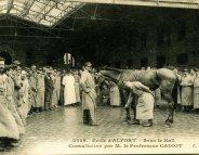 La médecine vétérinaire, une histoire française