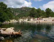 La bilharziose frappe en Corse du Sud