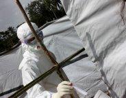 Ebola : l'OMS autorise l'utilisation de « traitements non homologués »