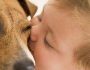 Asthme infantile : dormir avec un animal pour réduire le risque
