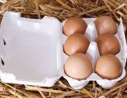 Menus-santé : vite, se faire cuire un œuf
