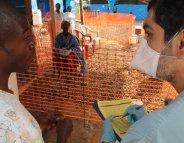 Le sang des convalescents, un médicament contre Ebola ?
