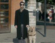 Chiens guides d'aveugles et lieux publics : en finir avec les préjugés