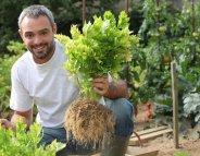 Jardinage : tout doux avec les produits phytosanitaires