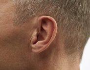 Intelligent comme un… appareil auditif !