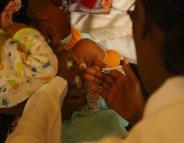 Ebola : le vaccin est à portée de main
