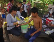 Dengue : les porteurs sains peuvent aussi contaminer les moustiques