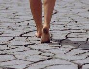 Changement climatique : et ma santé ?