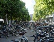 COP21 : ces villes qui se mettent en selle