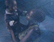 De bonnes nouvelles sur le front du paludisme