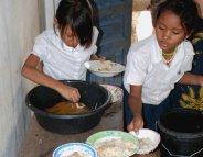 Cambodge: le riz enrichi favorise un parasite intestinal
