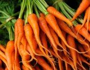 Menus santé : les carottes, le plein de vitamines pour l'hiver