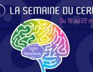 Semaine du cerveau : encore 6 jours pour vous informer !