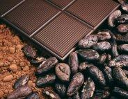 Le cacao, une fève gorgée de bienfaits
