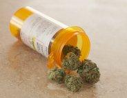 Le cannabis thérapeutique plus efficace chez les hommes ?