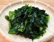 Algues : une mine d'or thérapeutique