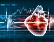 Muscler la lutte contre les maladies du coeur