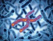 Cancers de la tête et du cou: découverte de gènes protecteurs contre le HPV