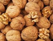 Menus-santé : la noix,  la coque de l'automne