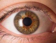 Diabète : dépistons les complications ophtalmologiques !