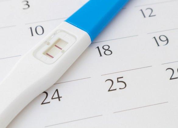 Grossesse : pourquoi calculer le terme en semaines d'aménorrhée ?