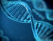 Alzheimer : un test génétique estime l'âge des premiers symptômes