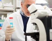 Hépatite C : offensive contre le brevet du sofosbuvir