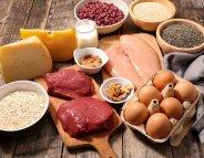 Des protéines pour des os plus résistants
