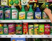 Vente de pesticides : la moitié des magasins en infraction