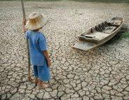 Changement climatique: conséquences en cascade sur la santé