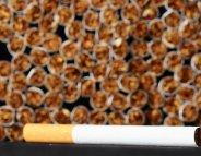 Tabac : les ventes en légère baisse