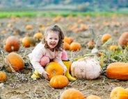 Menus santé : les enfants vont adorer le potiron