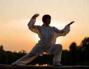 Kung-fu : une discipline d'équilibre