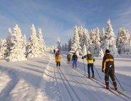 A la montagne, pour l'endurance, faites du ski de fond !