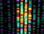Génétique : l'éthique au cœur d'une révolution médicale (Vidéo)