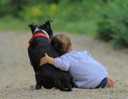 Faut-il avoir un animal de compagnie avec des enfants ?