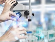Infertilité et cancer : premiers ovocytes cultivés en laboratoire