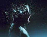 Un manque de nouveaux neurones à l'origine de l'addiction ?